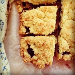 blueberry crumb bar