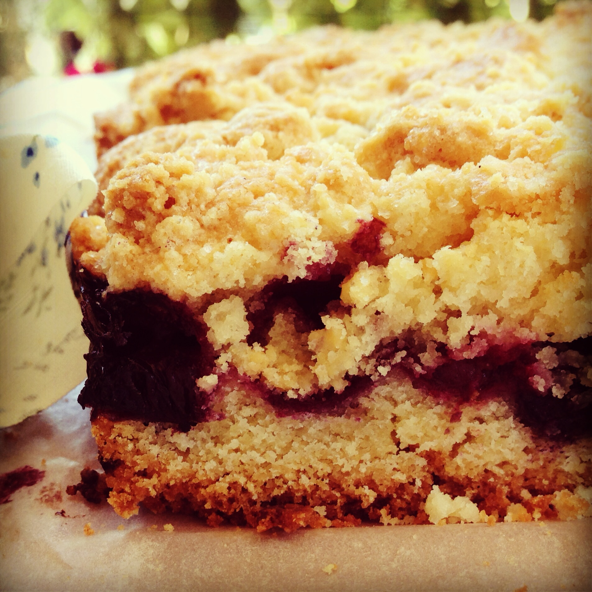 blueberry crumb bars | my lovely little lunch box