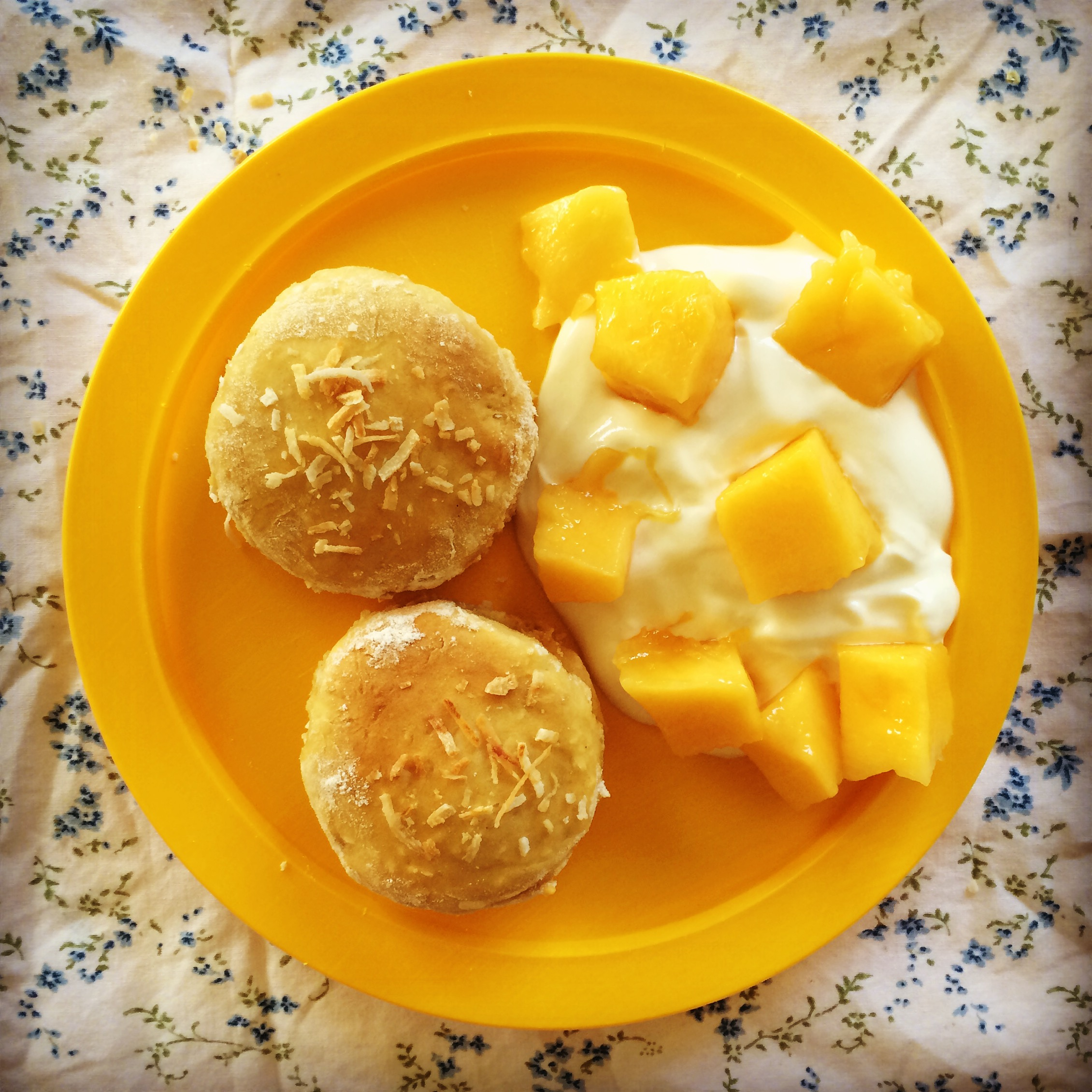 mango coconut scones | my lovely little lunch box