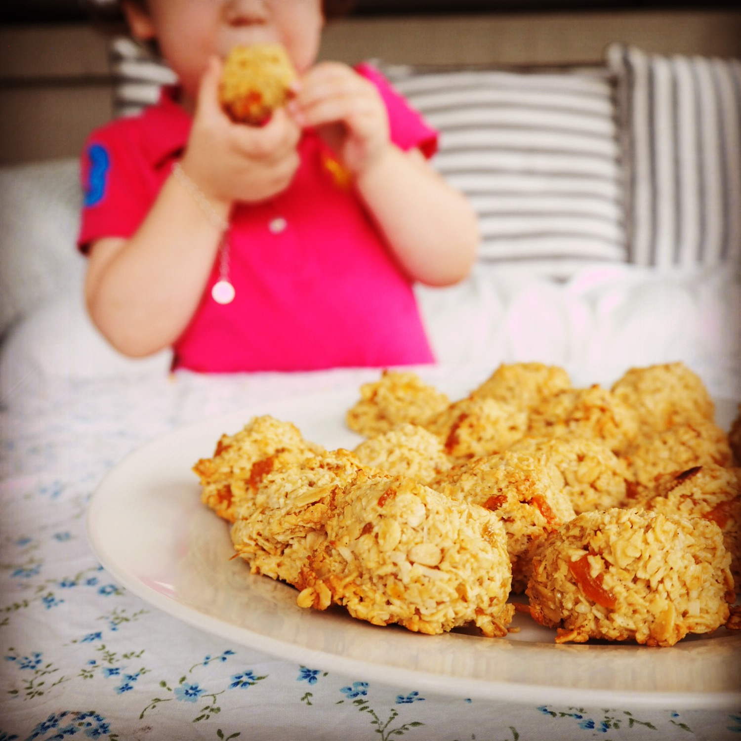apricot coconut breakfast cookies | my lovely little lunch box